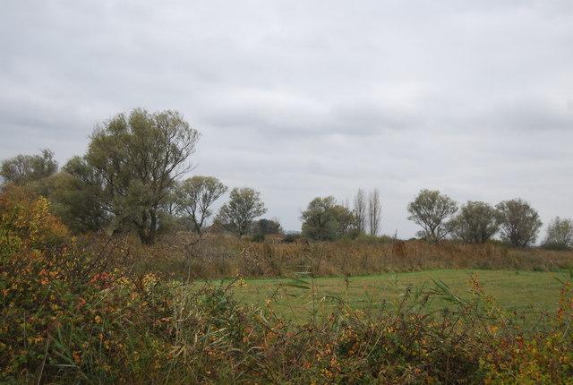 View to Buckland Fleet
