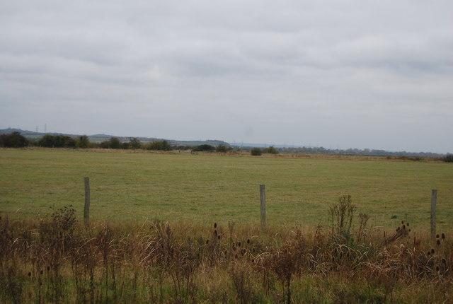 Farmland on the edge of Halstow Marshes