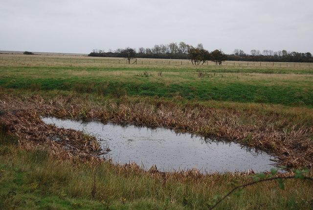 Pond, Swigshole