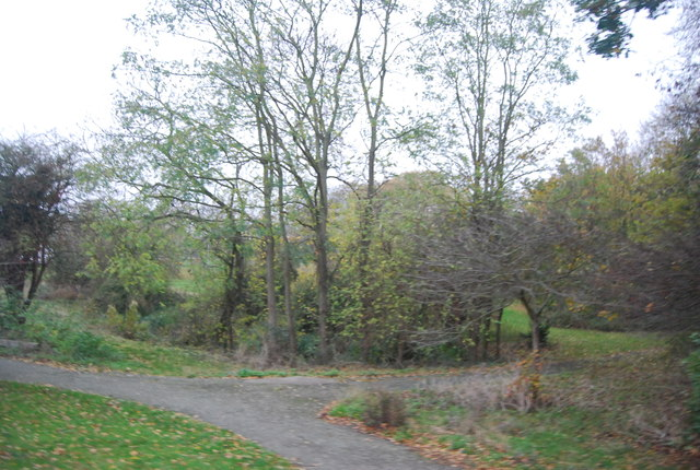Woodland, Curtis Wood Park