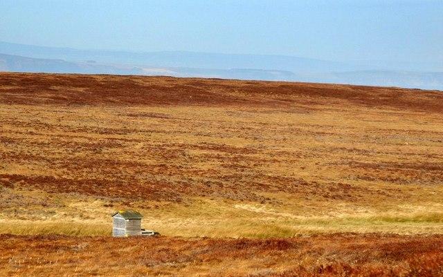 Hut on grouse moor