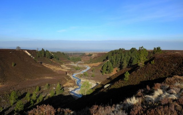 Riereach Burn with Scots Pines