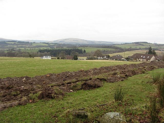 Field. Gartwhinzean