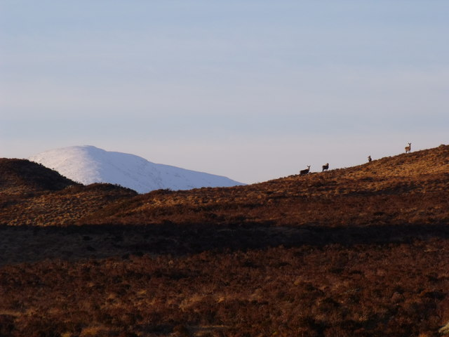High ground on Rannoch Moor north-east of A82