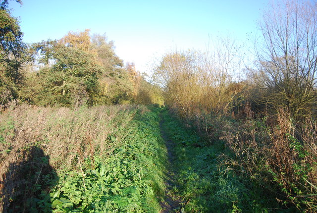 Footpath, north bank of the Great Stour