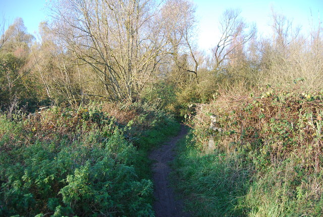 Path along the Great Stour