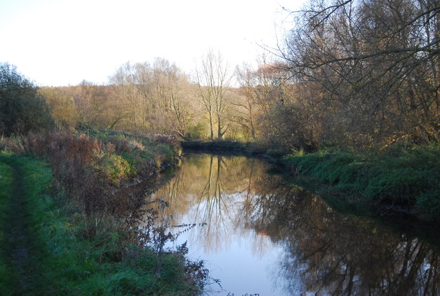 Reflections in the Great Stour