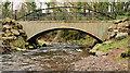 J3583 : Footbridge, Whiteabbey (2) by Albert Bridge