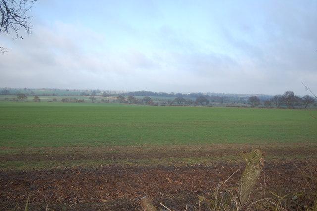 Landscape north west of Bulmer