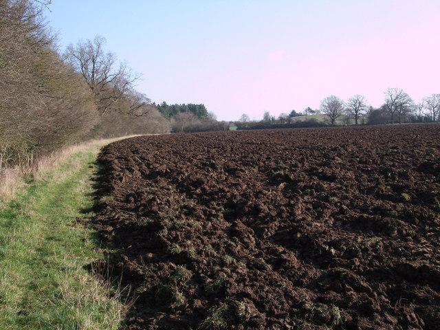 Footpath south of Oak Wood