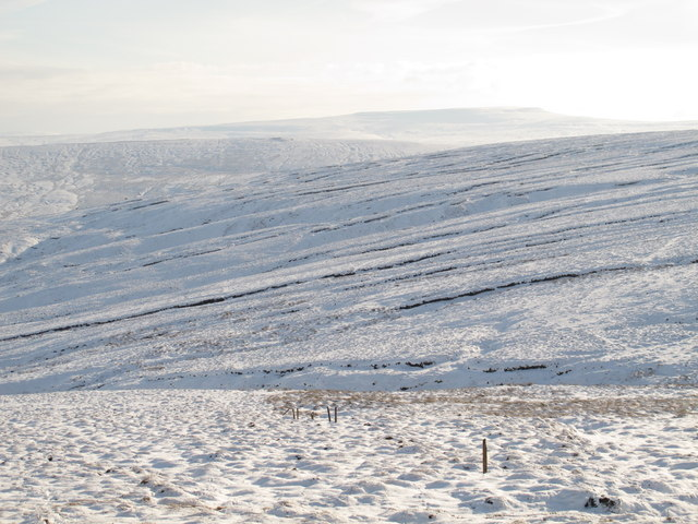 The Northumberland / Cumberland border above Calfless Head