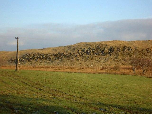 Watch Moss, pasture