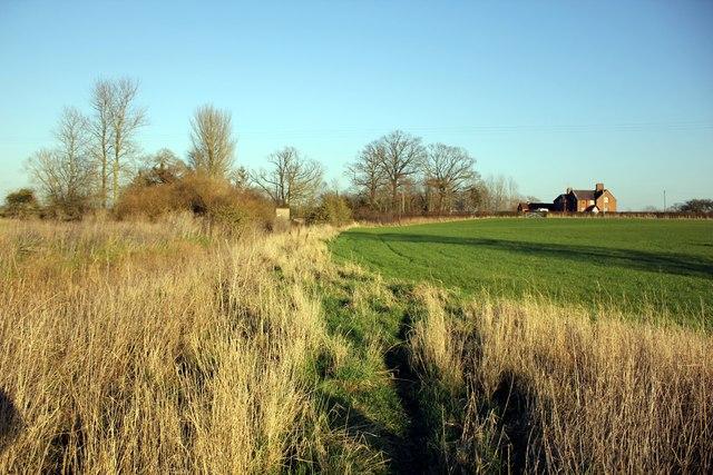 Footpath next to Aldford Brook