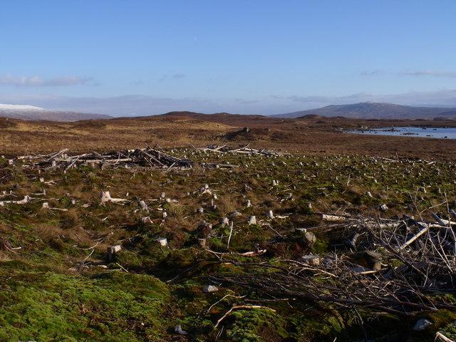 Lochan Beinn Chaorach beyond clearfell on Rannoch Moor