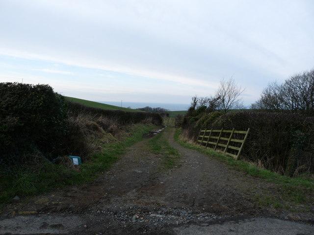 Downan Track