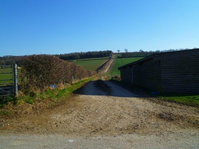 Track east from Brickkiln Farm
