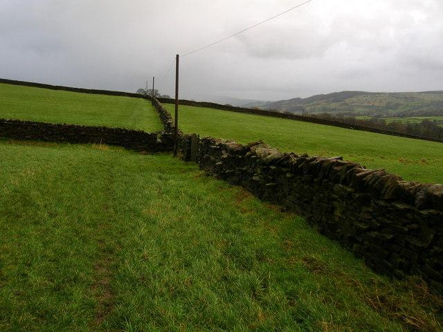 Drystone Walls East of Near Leys Farm