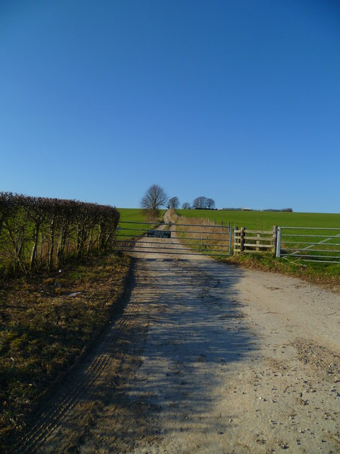 Farm track leading off the A286 to the west