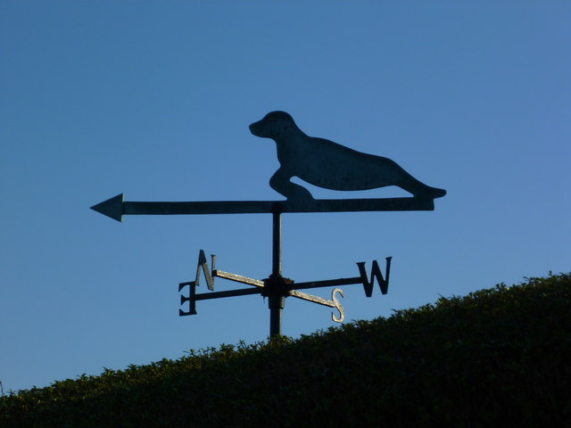 Weathervane by the sea at Selsey