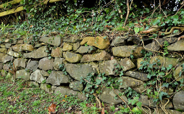 Drystone wall, Comber
