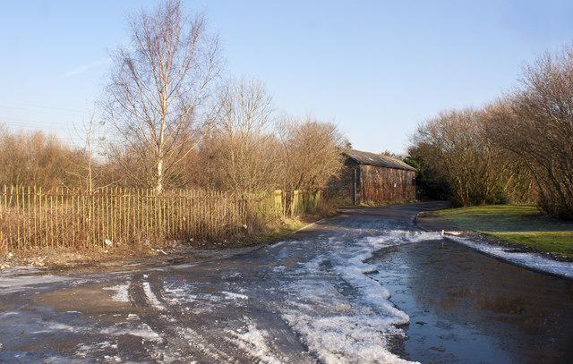 A frozen road near Carrington