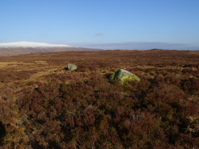 Random boulders on Rannoch Moor