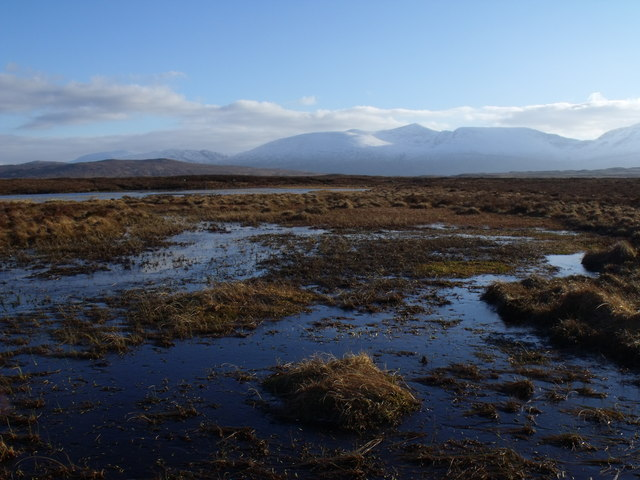 Boggy lochanside on Rannoch Moor
