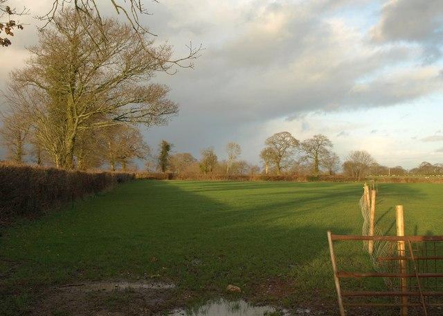 Field near Whitedown Cross