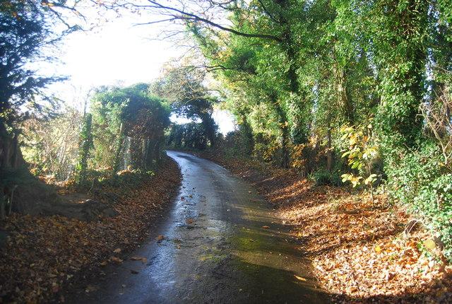 Bend, Wilson's Lane