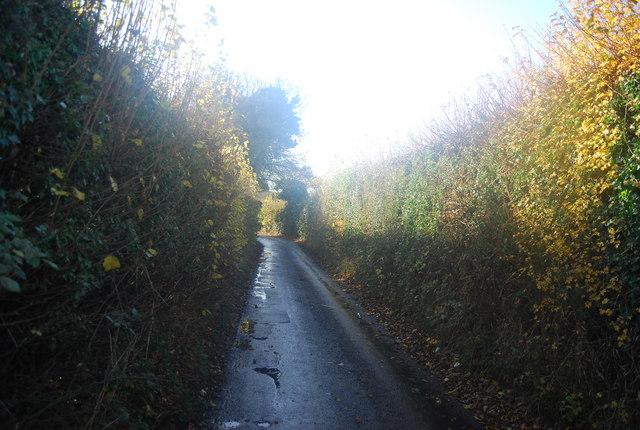 Wilson's Lane