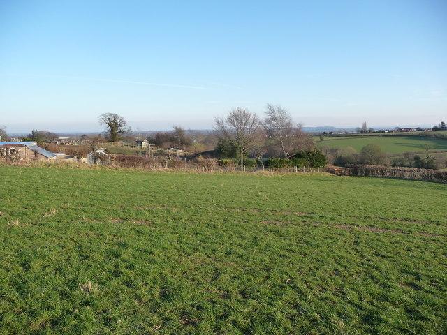 Field off Penylan Lane near Oswestry