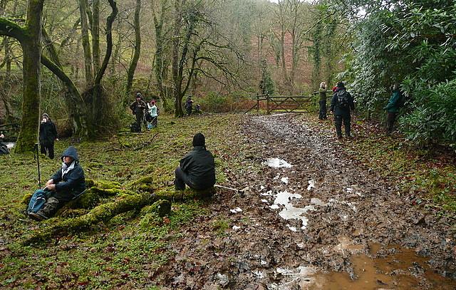 Rest in Langham Wood
