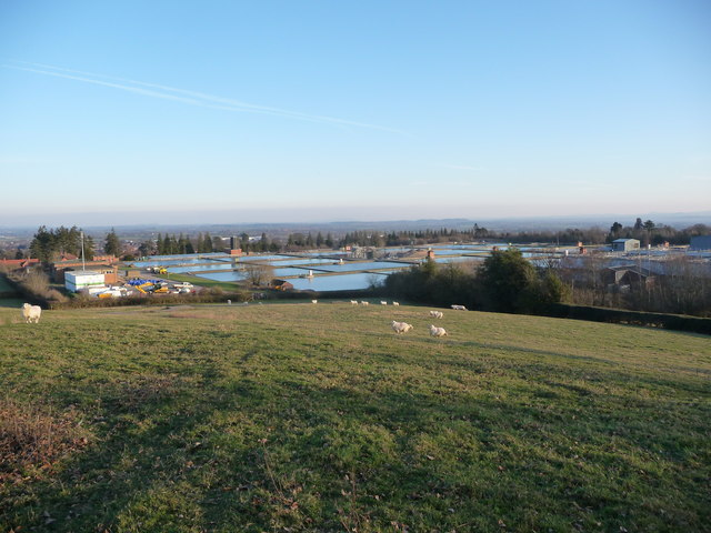 View over the Water Works outside Oswestry