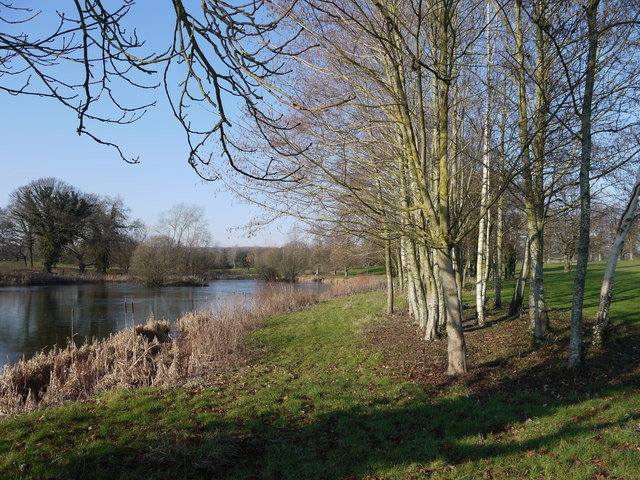 """The lake and """"rough"""", St Pierre golf course, near Chepstow"""