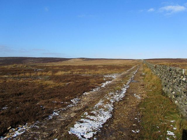 Track on Old Peat Moor