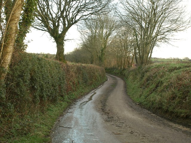 Lane to Gullyhayes Farm
