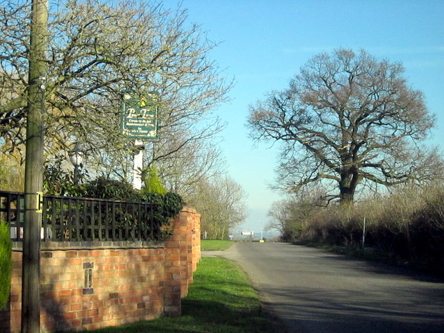 Smite Lane From The Pear Tree