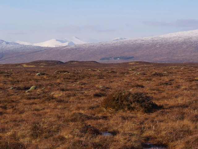 Area of mossy domes on Rannoch Moor