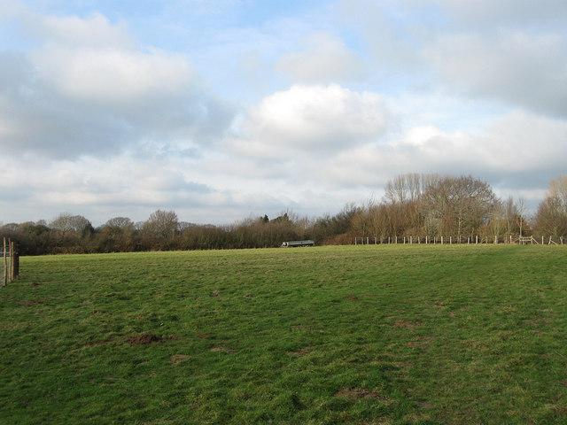 Street Field (2)