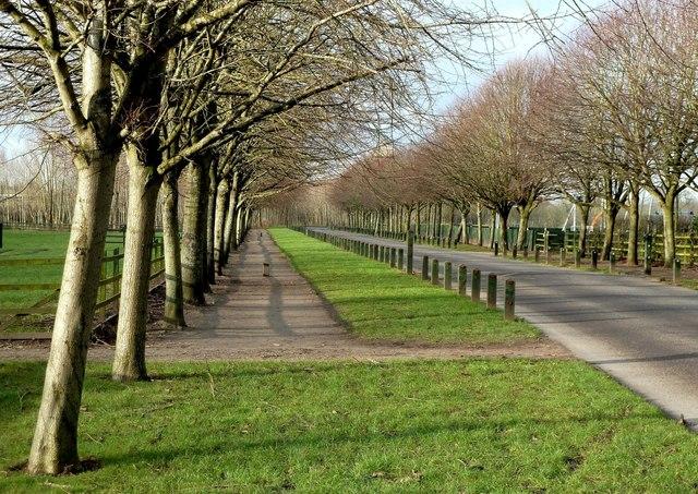 Eglinton Country Park Driveway