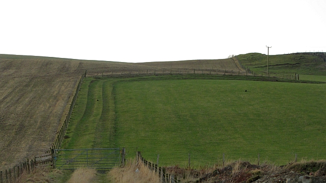 Improved pasture, Lochurd