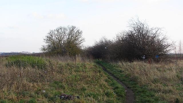Path outside Tranent