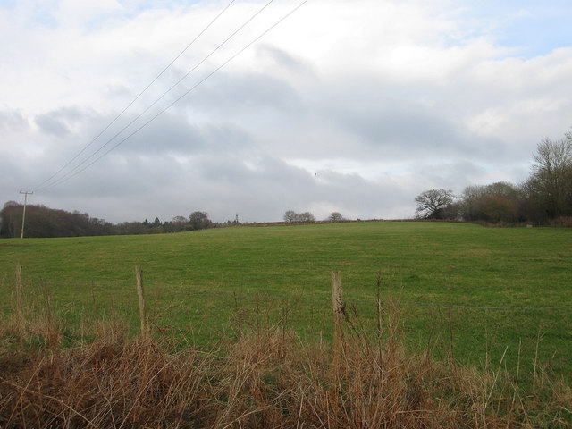 Stream Field