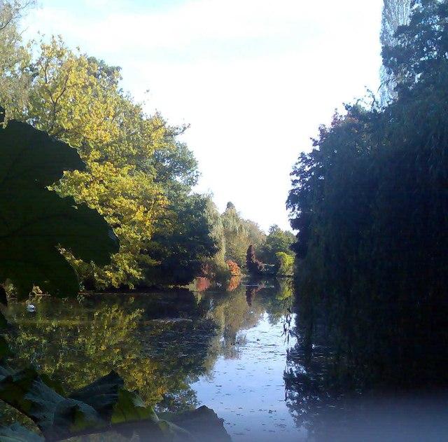 Lake view, Windlesham arboretum