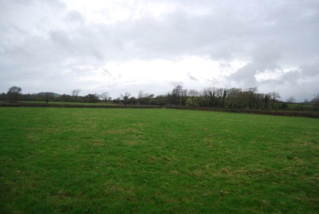 Field by Litton Rd