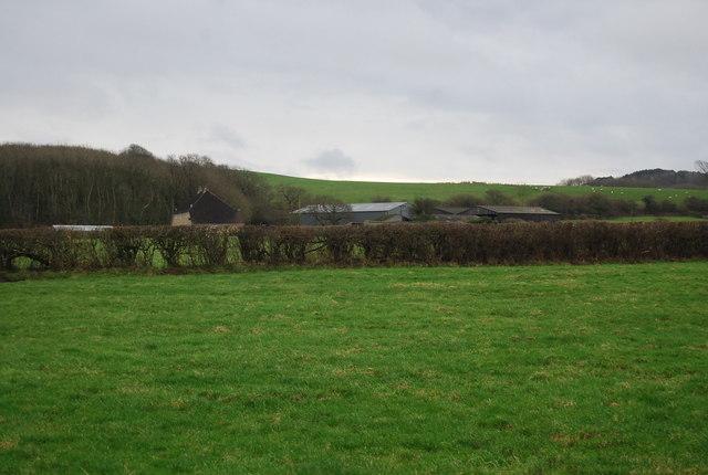 Litton Road Dairy