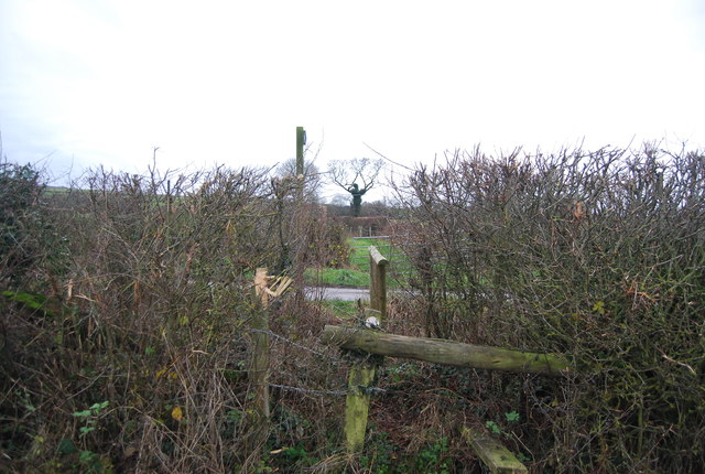 Stile on to Litton Rd
