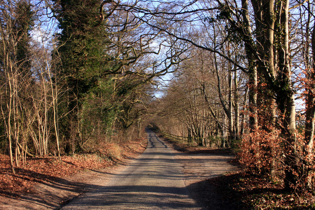 The Road Up Nuffield Hill