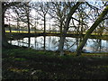 SO9463 : Pond in Hanbury Park by Peter Barr