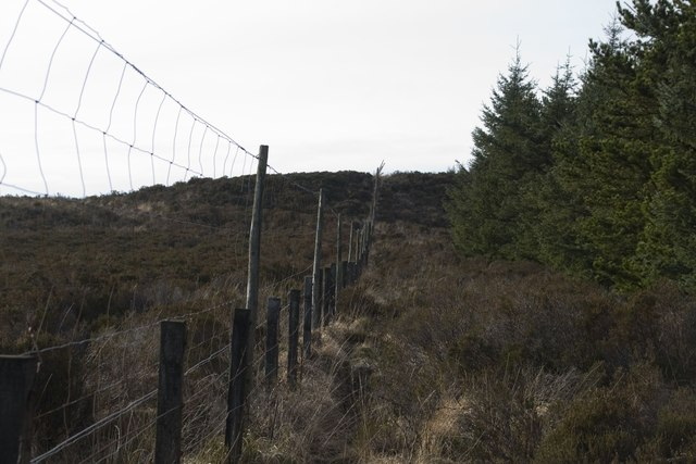 Deer Fence at edge of Cornabus Forest, Islay